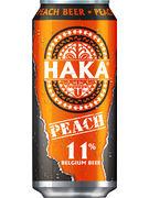 HAKA PECHE 11° CANS 50CL