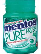 MENTOS bottle GUM PURE WINTERGREEN 30P 60G