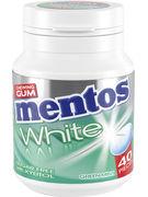 MENTOS bottle GUM GREEN MINT 40P 60G